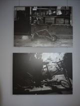 My Gallery (1/3)