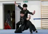 <strong>Pokaz Kung fu</strong> (2/13)