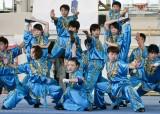 <strong>Pokaz Kung fu</strong> (5/13)