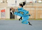 <strong>Pokaz Kung fu</strong> (8/13)